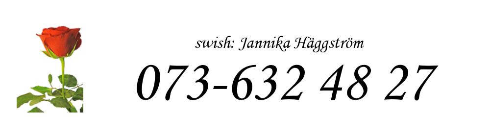 swishnummer bild till hemsidan